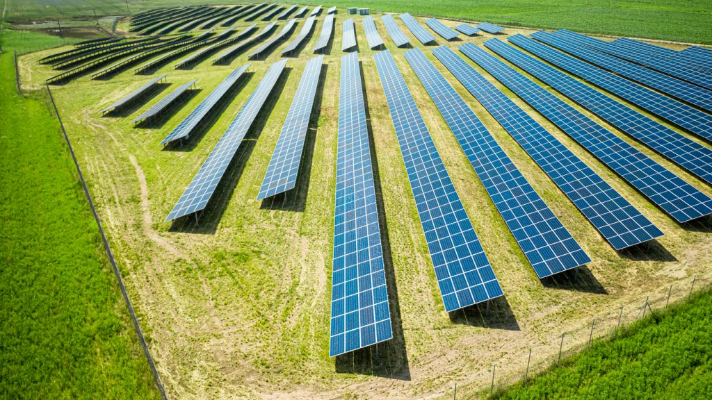 field of commercial solar panels